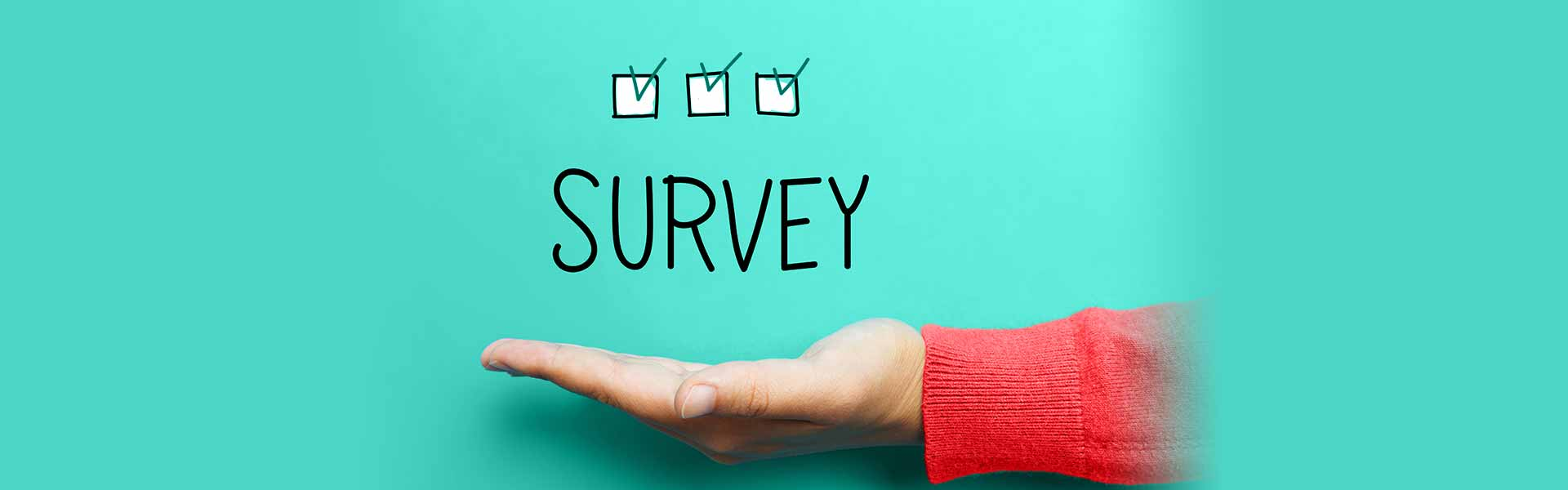 TopGraphics-Survey
